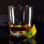 The 15 Best Whiskey Glasses