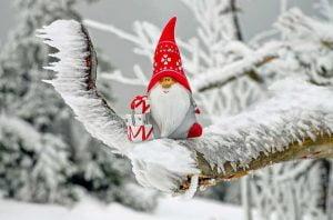 Gift Games Dirty Santa Or White Elephant