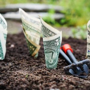 How to Invest Wisely and Build Your Nest Egg