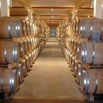Top 7 Health Benefits of Visiting a Winery
